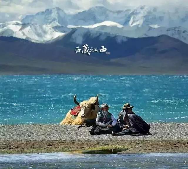 网友自驾游西藏